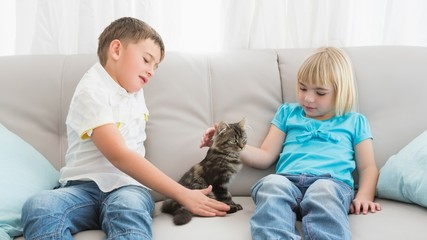 Siblings sitting on the couch stroking their cat