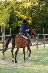 Cavallo con sopra un fantino