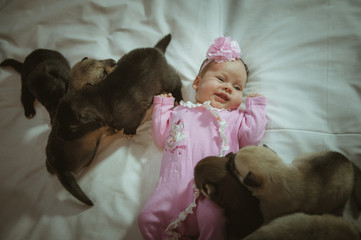 Image of cute little girl in pink suit and puppies on white