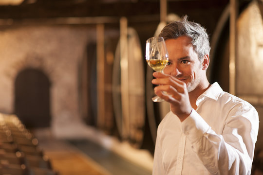 professional winemaker examining a glass of white wine in a trad