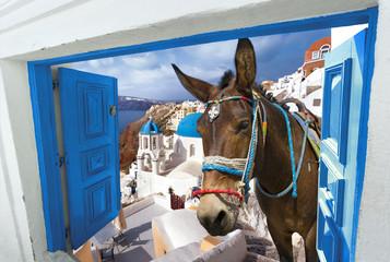 île de Santorin Cyclades Grèce - fototapety na wymiar