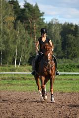 Beautiful brunette woman riding (trotting) chestnut horse