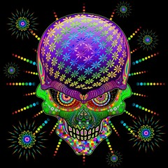 Self adhesive Wall Murals Draw Crazy Skull Psychedelic Explosion