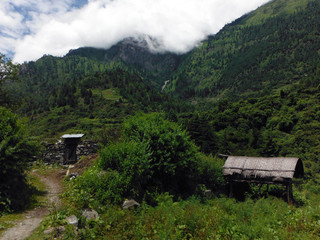 Farmer's Shed in the Green Lower Himalayas during Monsoon