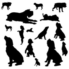 Vector silhouettes of different dogs.