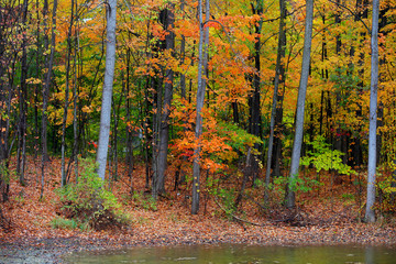 Fall foliage in Michigan state parks