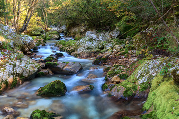 Mountain stream in the Lepena valley