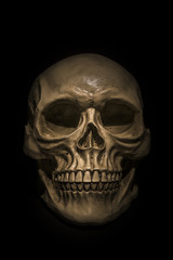 Spooky skull on black background
