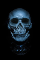 Spooky skull with reflection on black background