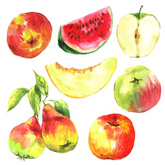 Set of watercolor fruit on a white background