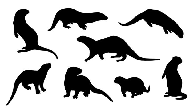 otter silhouettes