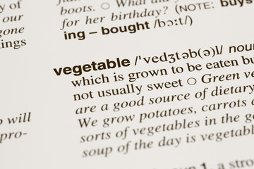 Definition word vegetable in dictionary
