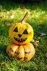Halloween pumpkins on green grass background, outdoors