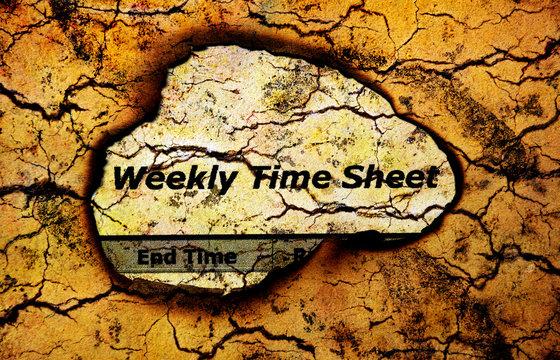 Weekly time sheet