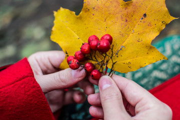 autumn hands and berries