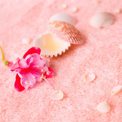spa tender concept with pink flower fuchsia, seashells on delica