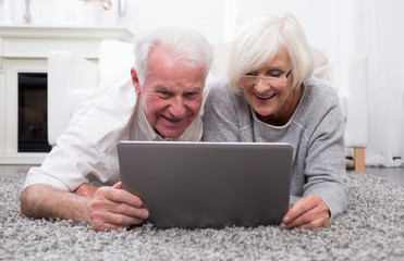 happy mature couple with pc
