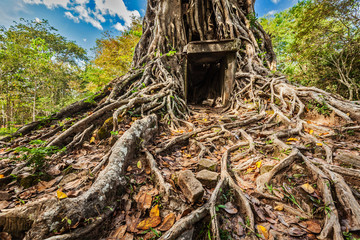 Fotomurales - Sambor Prei Kuk temple ruins, Cambodia