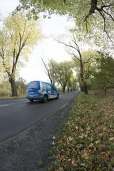 Droga wśród drzew - fototapety na wymiar