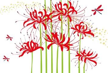 彼岸花と赤とんぼと星