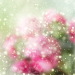 green and pink bokeh background