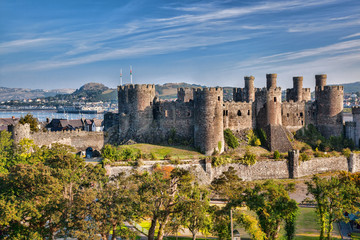 Conwy Castle in Wales, United Kingdom, series of Walesh castles Wall mural