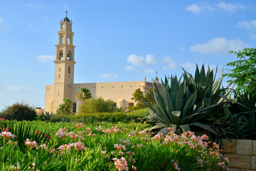 ..the Cathedral of St. Peter in Jaffa