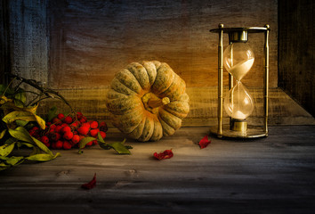 still life with pumpkin, autumn