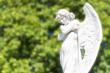 Beautiful angel on a diffused trees background