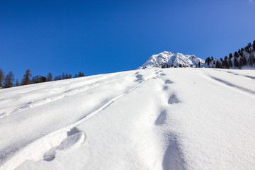 Percorso su neve in montagna d'inverno