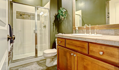 Bathroom interior with dark olive walls