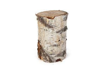 Isolated photo of birch stump