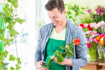 Florist arbeitet in Blumenladen mit Blume