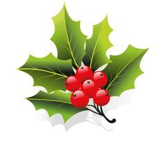 weihnachtsdeko,mistel,zweig,ilex,stechpalme,leaf,immergrün