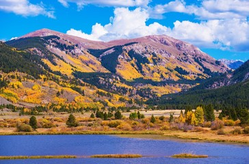 Wall Mural - Colorado Autumn