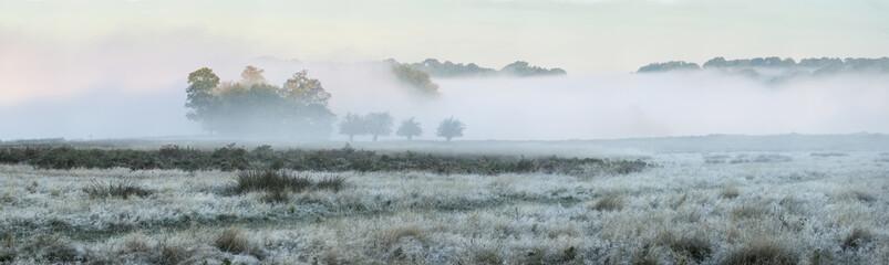 Panorama landscape of foggy Autumn Fall sunrise over frosty fiel