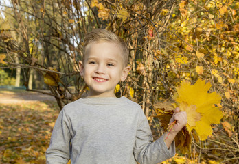 boy playing with autumn leaves