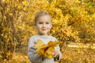 joyful boy with autumn leaves in the park