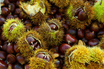 chestnuts background