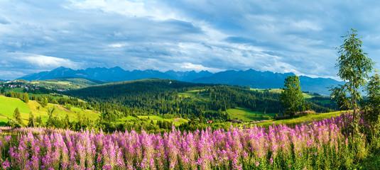 Summer mountain country panorama (Gliczarow Gorny, Poland)