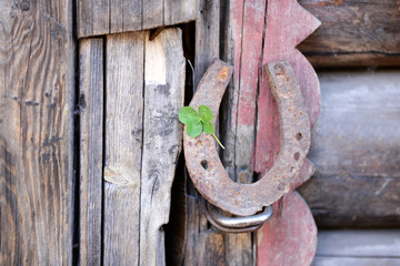 Wall Mural - Old horse shoe with clover leaf on wooden door outdoors