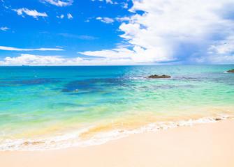 Shore Landscape Serene Waters