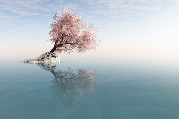 A lonely tree with reflection in the water