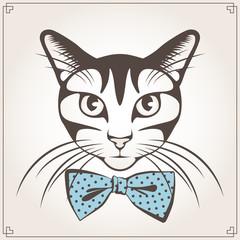 Vector portrait of the cat