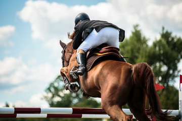 Printed kitchen splashbacks Horseback riding Equestrian, horse jumping, show jumping competition themed photograph.