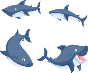 Illustrator of sharks cartoon