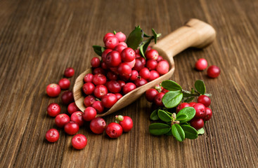 ripe cranberries in a wooden scoop