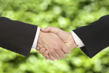 Business handshake, on beautiful green background