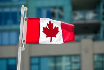 Small Canadian Flag Waving