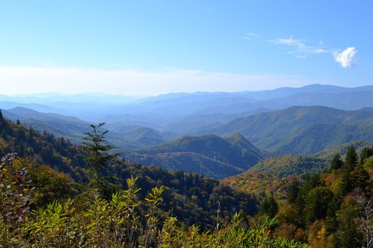 Appalachian Mountain Scene-04